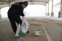 Karaman Belediyesi Aç Kalan Kuşlara Yem Bıraktı