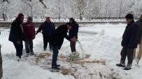 Seydişehir Belediyesi Kuşlar İçin Doğaya Yem Bıraktı
