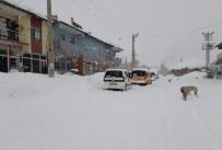 Bingöl'de Kar Yağışı Hayatı Felç Etti
