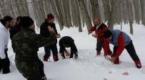 ORMANA - Bursalı Dağcılar Yaban Hayvanlarını Unutmadı
