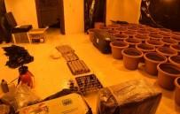 KAÇAK ELEKTRIK - Mersin'de Hint Keneviri Yetiştiricilerine Suçüstü