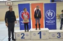 SATRANÇ FEDERASYONU - Satranç İl Birinciliği Turnuvası Sona Erdi