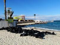 PANAMA - Turizm Cenneti 2 Ayda Temizlenebilecek