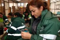 SARMAŞıK - Çankaya'da Yeşil Alan Çalışmaları