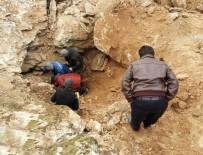 Kayalıklarda Sıkışan Köpeği AFAD Ekipleri Kurtardı