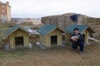 SOKAK KÖPEKLERİ - Krıklareli Belediyesi'nden Sokak Hayvanlarına Ev
