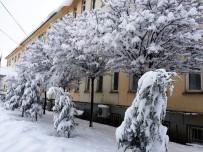 KAR MANZARALARI - Muradiye'de Kar Yağışı