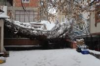 Çankırı'da Kar Yağışı Sevindirdi
