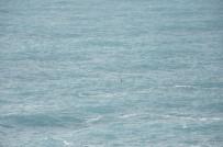 BEACH - Dalgalı Denizde Boğulma Tehlikesi Geçiren Kişiyi Polis Kurtardı