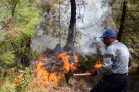 MEHMET ÇELIK - Doğu Karla, Muğla Yangınla Mücadele Ediyor