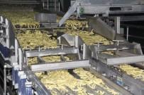 KONYA OVASı - Konya Şeker, Patates Üreticisinin Yüzünü Güldürdü