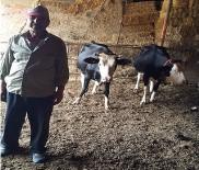 BÜLENT TURAN - Orman Bakanlığından Köylülere Ekonomik Destek