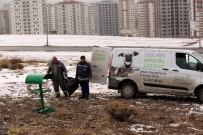 TALAS BELEDIYESI - Talas Belediyesi Yaban Ve Sokak Hayvanlarını Unutmadı