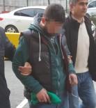 ZEYTINLIK - Yağ Hırsızlığından Gözaltına Alınan Şahıs Serbest Bırakıldı