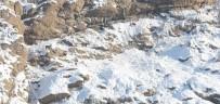 SÜMBÜL DAĞI - Hakkari'de Dağ Keçileri Görüntülendi