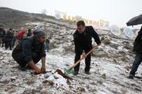 NECDET AKSOY - Safranbolu'da Çam Ağaçlarının Kesilmesi, Fidan Dikimiyle Protesto Edildi