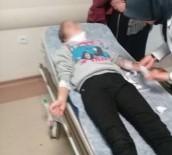 12 Yaşındaki Kıza Köpek Saldırdı
