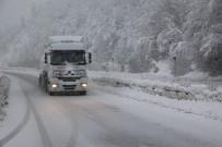 TEM OTOYOLU - Bolu Dağı Ve Kent Merkezinde Yoğun Kar Yağışı
