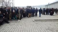 HAKKARİ VALİSİ - Derecik Halkı Bakan Soylu'yu Bekliyor