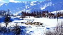 KONYA OVASı - Kar yağışı çiftçileri sevindirdi