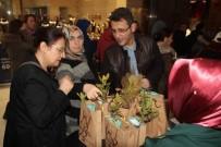 KUŞBURNU - Samsun'da 4 Bin Fidan Dağıtıldı
