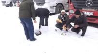 DONMA TEHLİKESİ - TIR Şoförleri Araçlarda Mahsur Kaldı