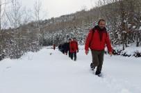 ALMANLAR - Gümüşhaneli Dağcılar Kar Altında Yürüdü