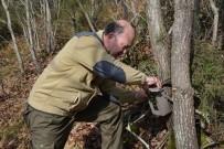 BİYOLOJİK ÇEŞİTLİLİK - Tekirdağ'da Biyolojik Çeşitlilik İzleme Çalışmaları Devam Ediyor