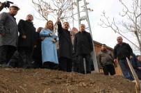 ÖZNUR ÇALIK - Ak Parti Heyeti İspendere İçmelerini Ziyaret Etti
