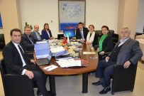 GENEL SEKRETER - ÇTSO'da Akreditasyon Denetimi Gerçekleşti
