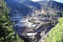 BURHANETTIN KOCAMAZ - Erdemli İçme Yaylasının Şifalı Suyu Sağlık Turizmine Açılacak