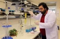 ENERJİ VERİMLİLİĞİ - 'Yakın Gelecekte Şehirler Bitkilerle Aydınlanacak'