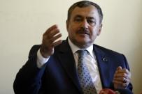 ŞEHİR İÇİ - '11 İlde 200 Bin Çınar' Projesinde Sona Doğru