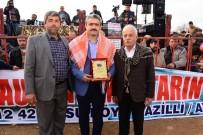 ŞEHİT AİLELERİ - Nazilli'de Develer Şehit Aileleri Yararına Güreşti