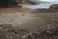 DOLULUK ORANI - Yağışların Barajlara Etkisi Olmadı