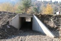 CENGIZ ERGÜN - Yağmur Suyu Zararlarına Menfezli Çözüm