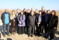 HASIP KAPLAN - Avrupalı Parlamenterler Cezaevine Alınmadı