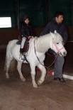 HAYVAN SEVGİSİ - Çocukların Pony Sevinci