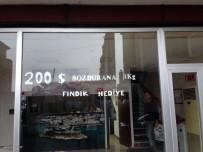 REKOR - Dolarını Bozdurana Fındık Hediye