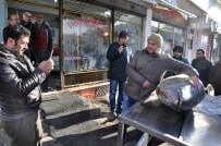 ORKİNOS - Kars'ta 250 Kiloluk Dev Orkinos İlgi Odağı Oldu