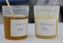 SAHTE BAL - Sahte Balda Kanser Tehlikesi