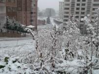 Trabzon'da Kar Yüksek Kesimlerde Etkili Oluyor