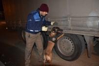 UYUŞTURUCU MADDE - Giresun'da 600 Polis İle 'Huzur' Uygulaması