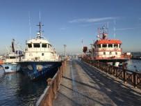 KURU BAKLİYAT - Karakaş, 'Balıkçıların Ekonomiye Katkıları Tartışılamaz'