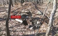 SEHİ ORMANLARI - Şehit Topçu Teğmen Cemal Tepeli-3 Operasyonu