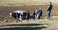 TİCARİ ARAÇ - Siverek'te Trafik Kazası Açıklaması 1 Yaralı