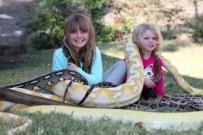 Piton yılanı ile tehlikeli oyun