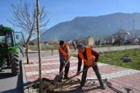 KARAAĞAÇLı - Şehzadeler Belediyesi'nden Ağaçlandırma Seferberliği