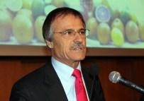ALI KAVAK - Kavak Açıklaması 'Türkiye'nin 2015 Yaş Meyve-Sebze İhracatı Geliri 2,5 Milyar Dolar'