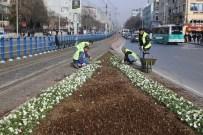 HERCAI - Büyükşehir'den 2 Milyon Çiçek